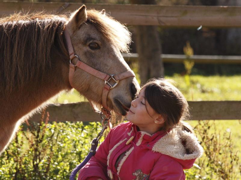 Equitation pour les colonies de vacances Les Blacouas