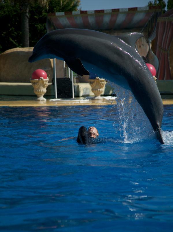 Marineland pour les colonies de vacances des Blacouas